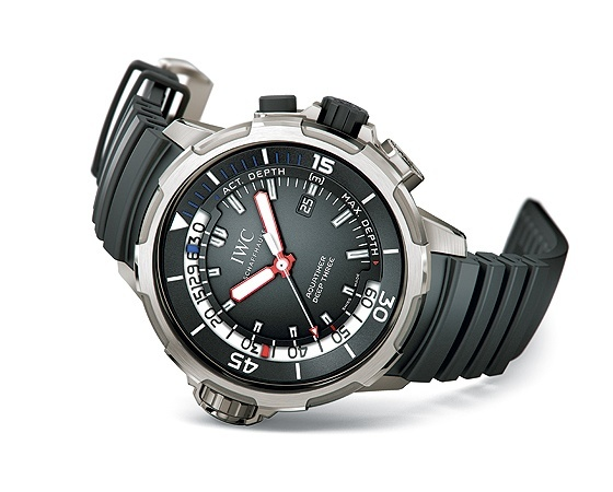 FAQs For Dive Replica Watches-IWC
