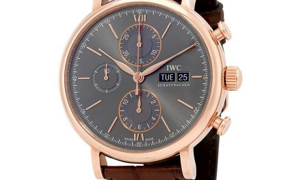 IWC Portofino Chronograph Ardoise Dial Men's Watch Item No. IW391021  Swiss Movement Replica Watches